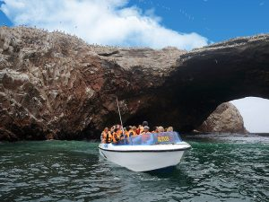 Tour Islas Ballestas