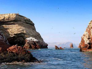 Paquetes Turisticos Paracas – Nazca: 2 Dias y 1 Noche